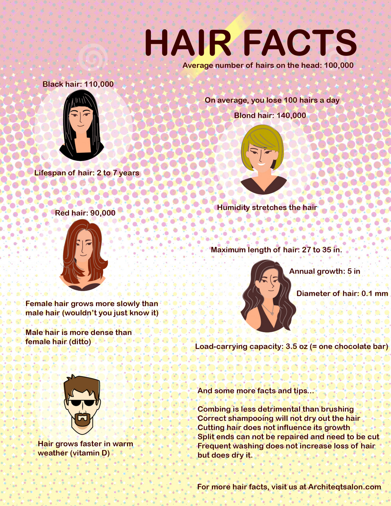Fun Hair Facts Visual Ly