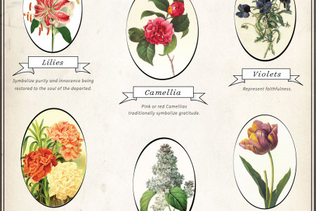 Funeral Flowers and Their Meanings  Infographic