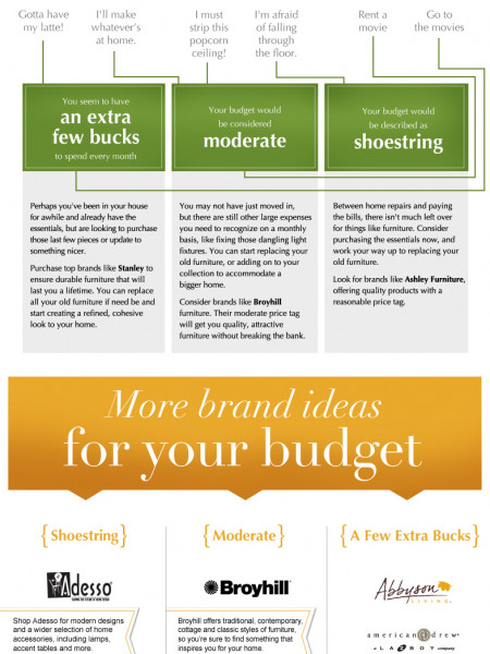 Furniture Buyer's Guide Infographic