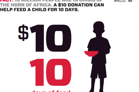 FWD the Facts - How $10 Can Help Infographic