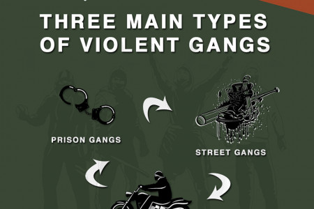 Gang Violence In America Infographic