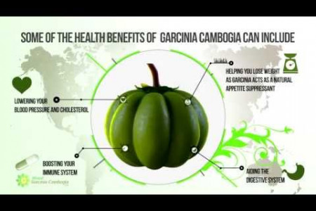 Garcinia Cambogia InfoGraphic Movie - Facts and Details Infographic