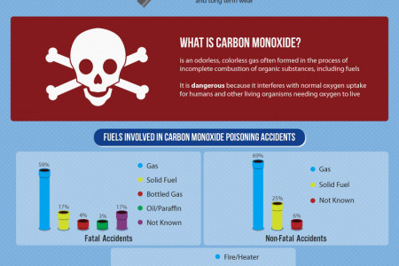 Gas Leaks: A Plumbing Issue That Should Never Be Taken Lightly Infographic
