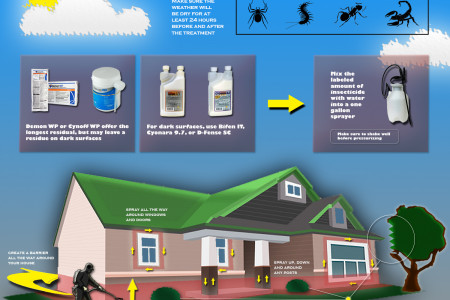 General Exterior Insecticide Spray Treatment Guide Infographic