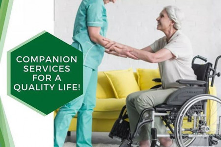 Get Companion Services at Houston for A Quality Life Infographic