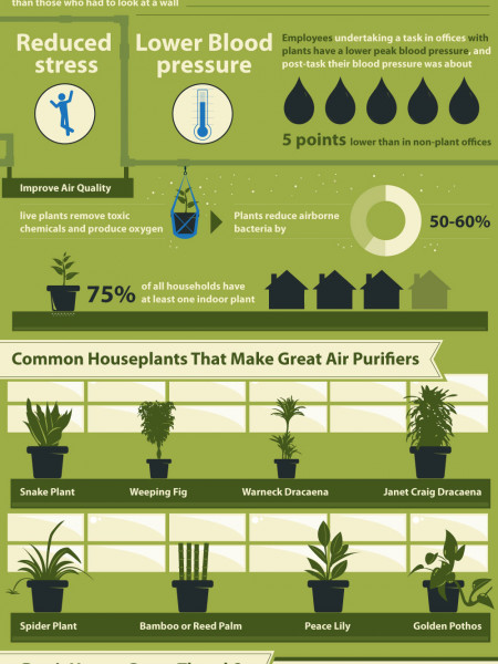 Get More Done One Simple Green Secret Infographic