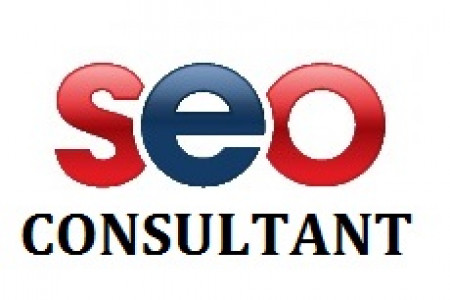 Get SEO Consultant Infographic
