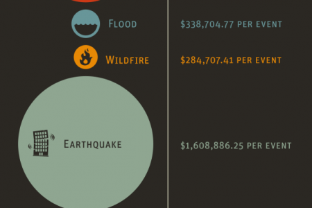 GET THE FACTS ON NATURAL DISASTERS Infographic