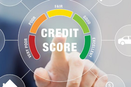 Get the Most Reliable Business Credit Services in USA from Thepeeplessolution Infographic