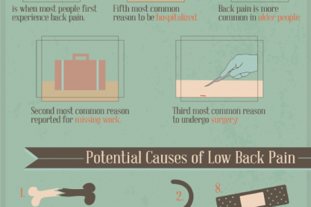 Get Your Back on Track: Understanding Low Back Pain Infographic
