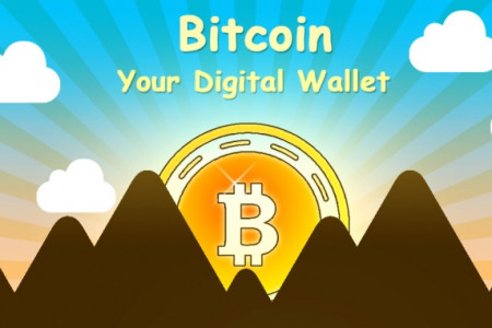 Getting Started With Bitcoin: Your Digital Wallet Infographic
