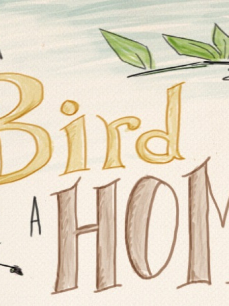 Give a Bird a Home Infographic