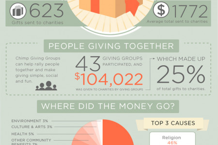 Give On Campaign Infographic
