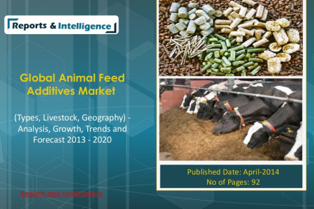 Global Animal Feed Additives Market Infographic