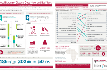 Global Burden Of Disease Infographic