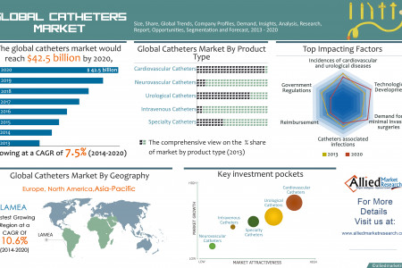 Global Catheters Market (Product Types and Geography) - Size, Share, Global Trends, Company Profiles, Demand, Insights, Analysis, Research, Report, Opportunities, Segmentation and Forecast, 2013 - 2020 Infographic