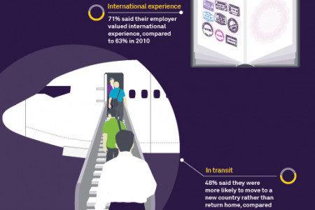 Global professionals on the move 2014 Infographic
