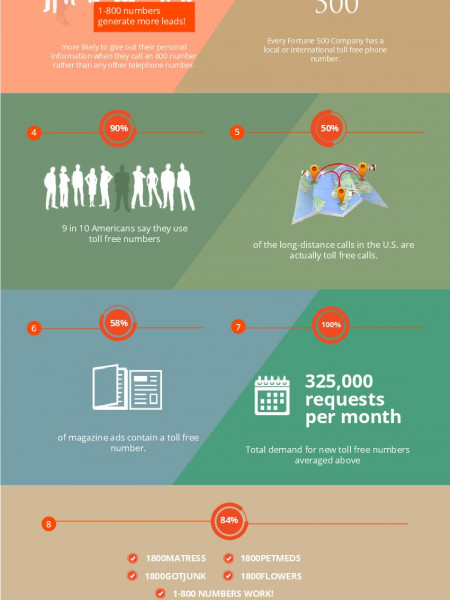 Top 10 facts about international toll free numbers. Infographic
