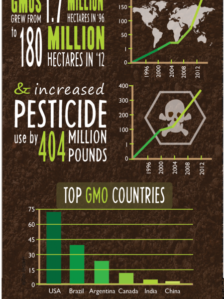 Organic Whole Foods Vs GMOs Infographic