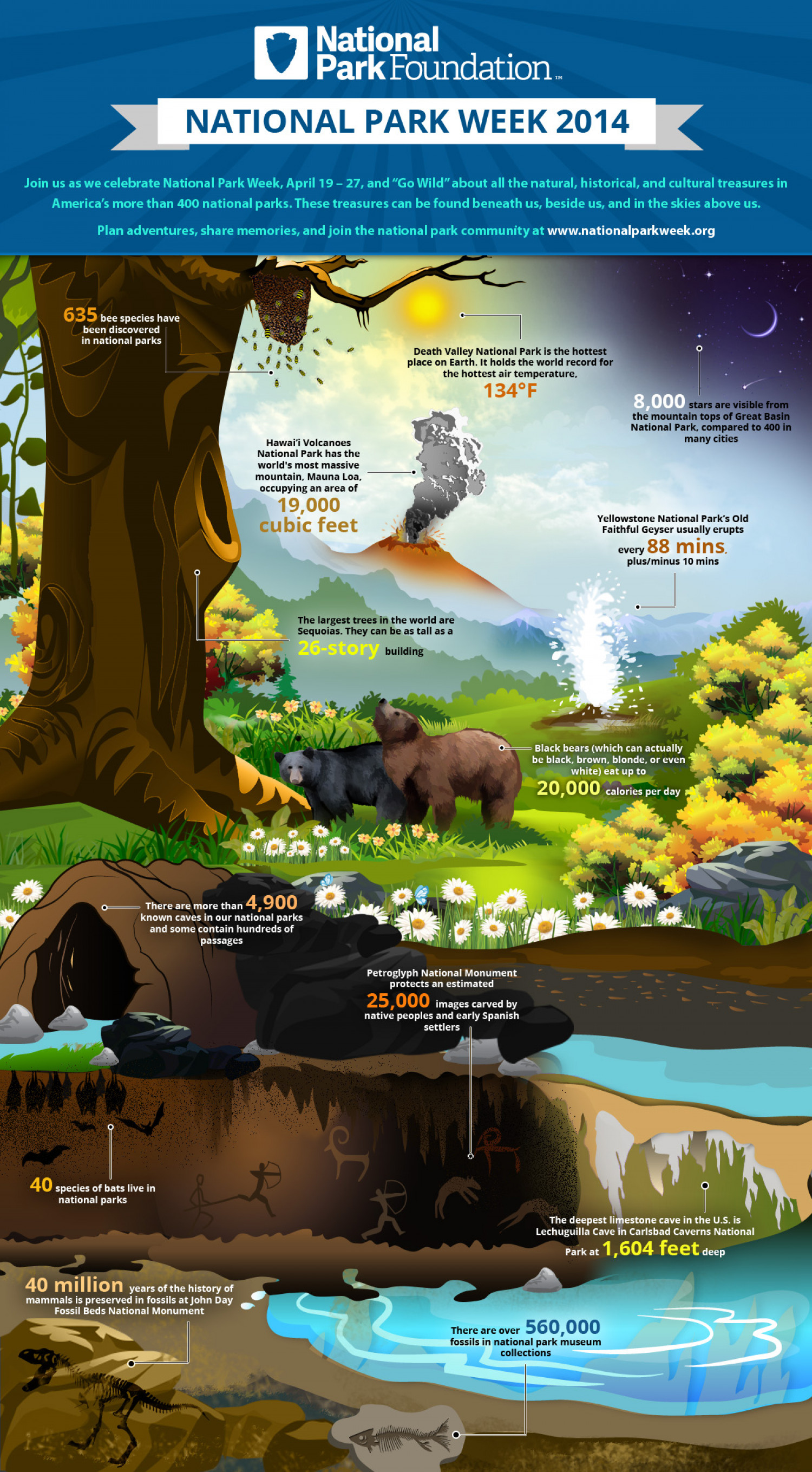 National Park Week 2014 Infographic