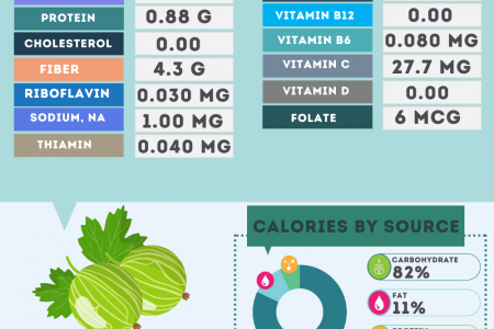 Gooseberry nutrition facts Infographic