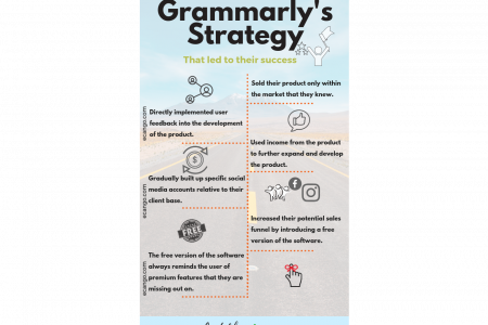 Grammarly Case Study - A Successful Self Funded Online Business Infographic