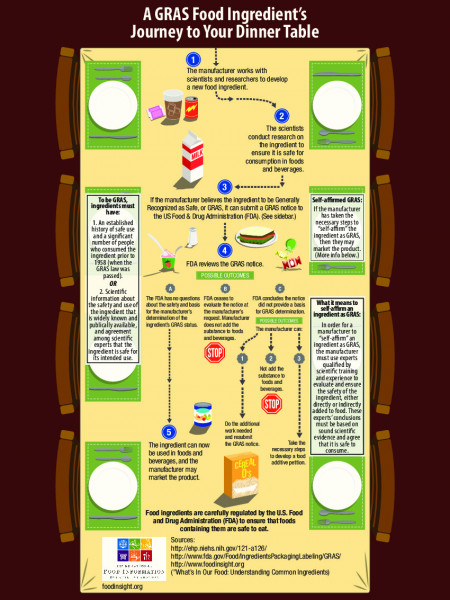 A GRAS Food Ingredient's Journey to Your Dinner Table Infographic