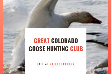 Great Colorado Goose Hunting Club Infographic