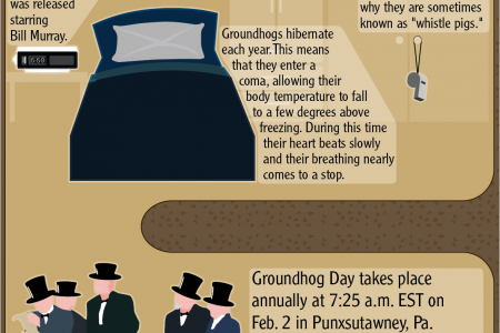 Groundhog Day Fun Facts Infographic