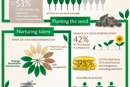 Grow your own CFO Infographic