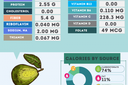 Guava nutrition facts Infographic