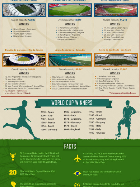 Guide to the 2014 FIFA World Cup Infographic