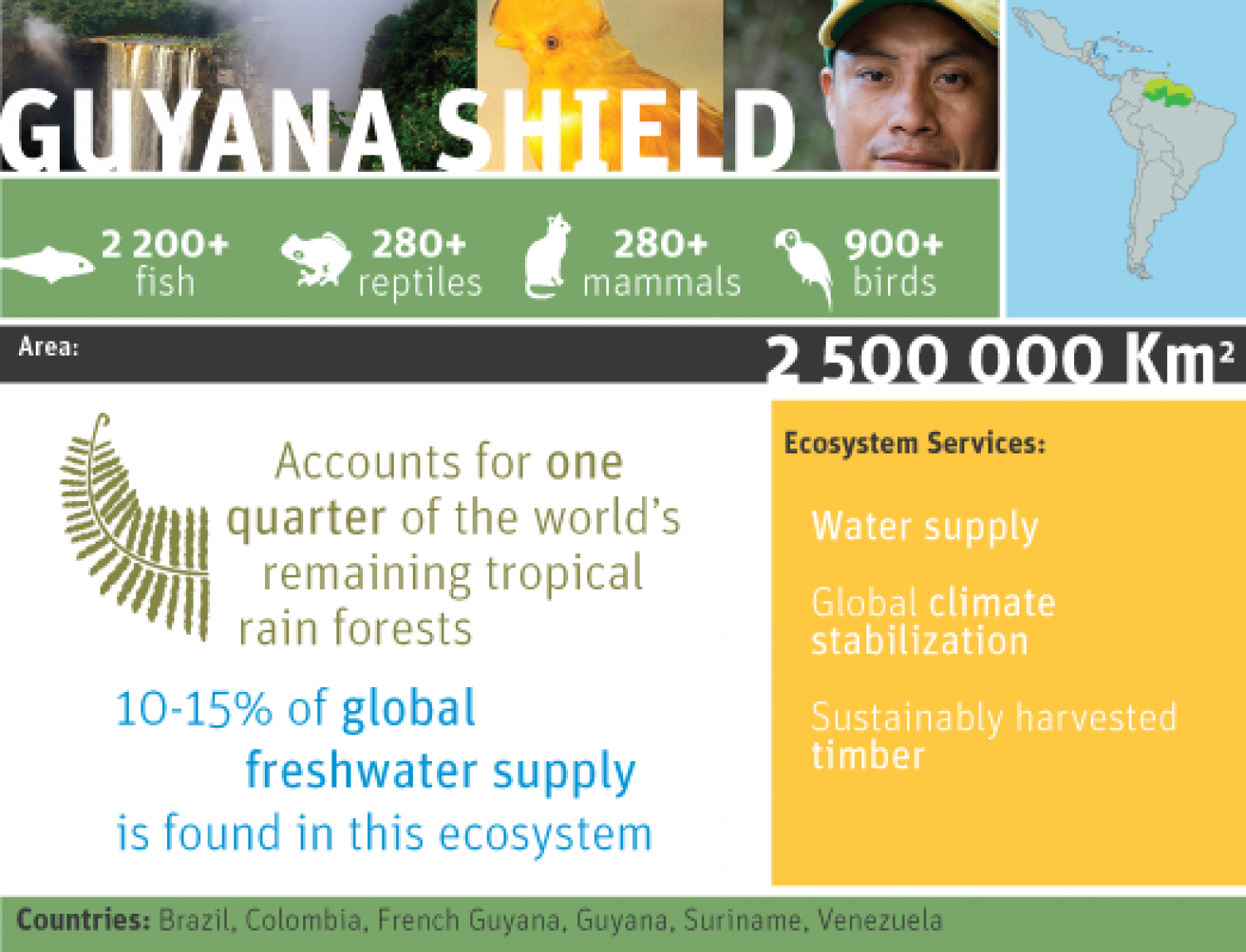 Guyana shield Infographic