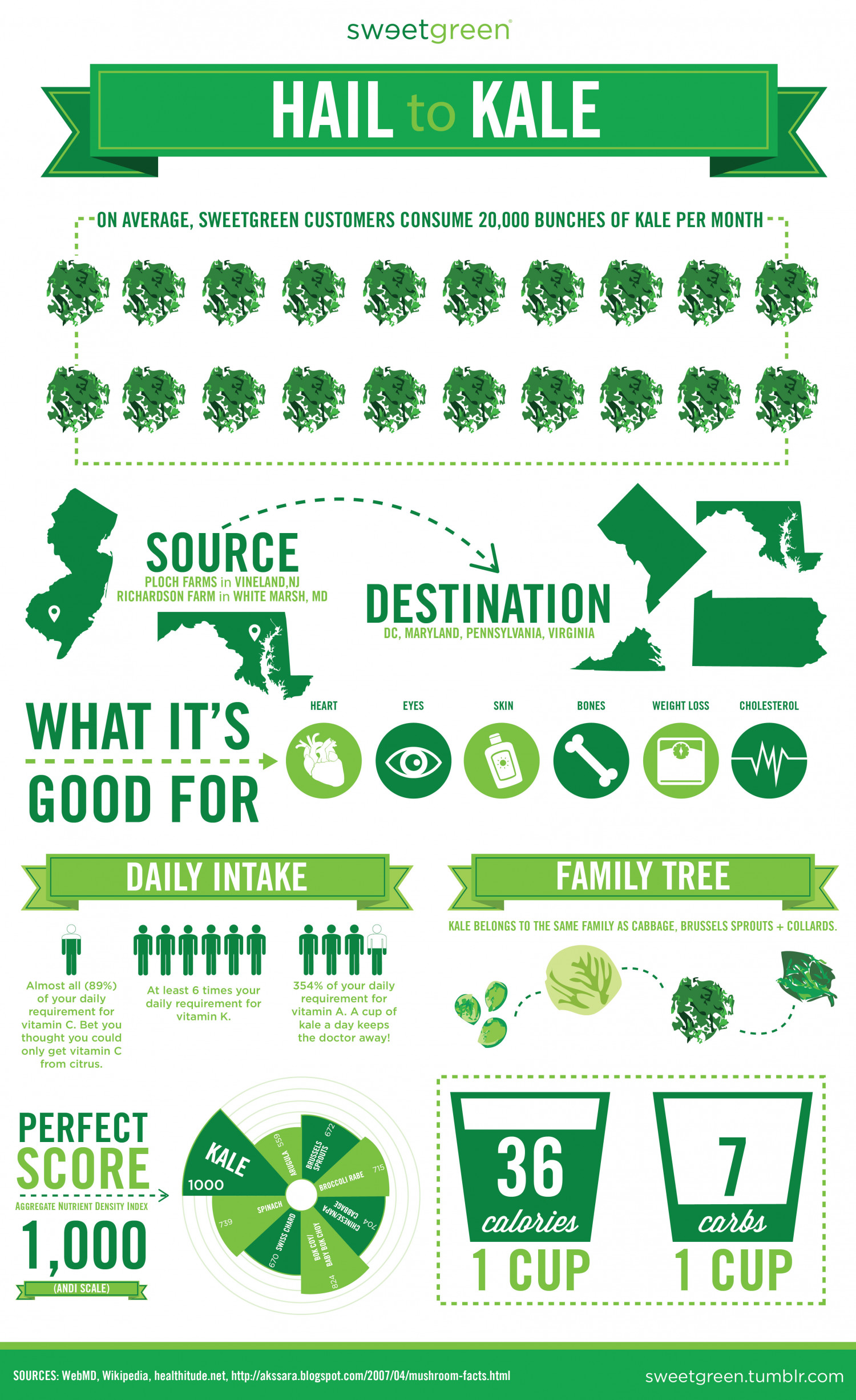 Hail to Kale Infographic