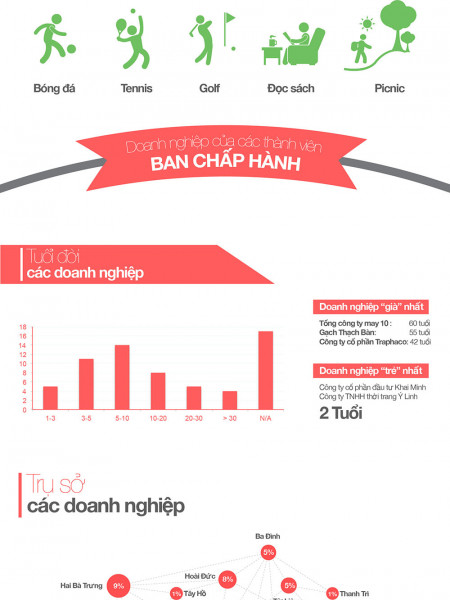 Hanoi SMEs board members statistics Infographic