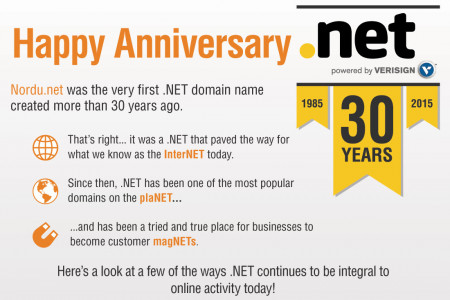 Happy Anniversary . NET Infographic
