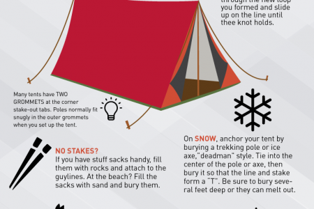 Happy Camping Infographic Infographic