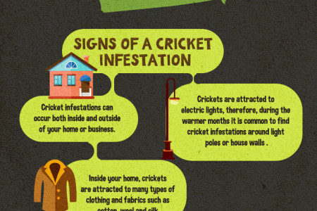 Have Fear, Cricket Season Is Here! Infographic