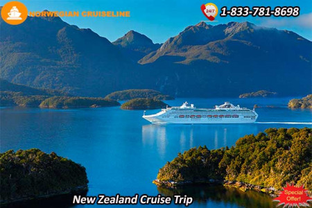 Have Fun with Norwegian Cruise Line in New Zealand Infographic