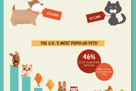 Have You Got the Funds for Fido? Infographic