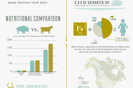 Health Benefits of Bison Meat Infographic