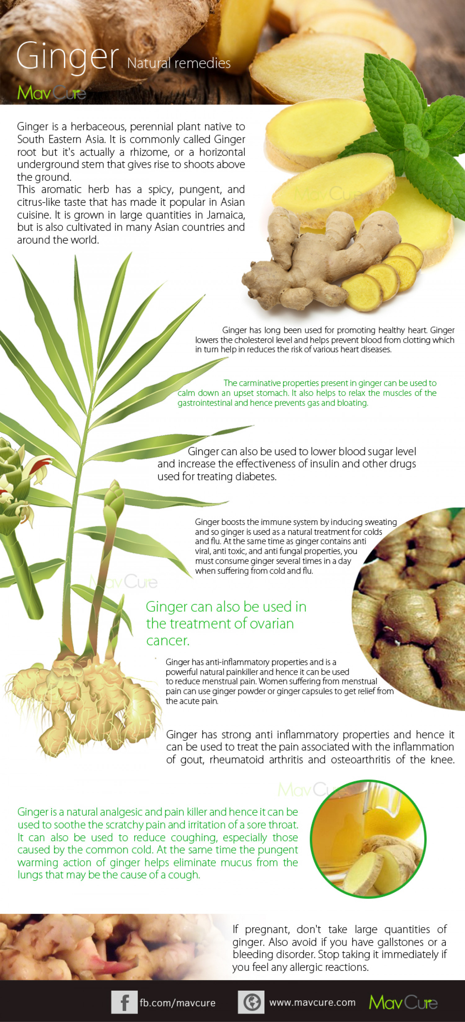 Health Benefits Of Ginger juice Infographic