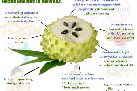 Health Benefits Of GRAVIOLA Infographic