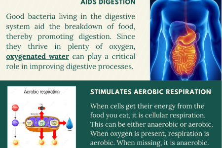Health Benefits Of Oxygenated Water Infographic