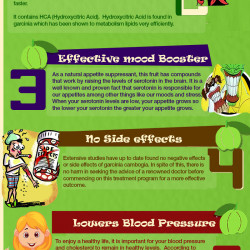 What Are The Health Benefits of Garcinia Cambogia Weight