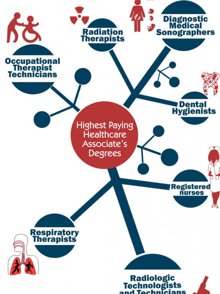 Highest paying healthcare careers Infographic Infographic