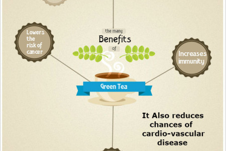 Healthbuddy Organic Green Tea Infographic