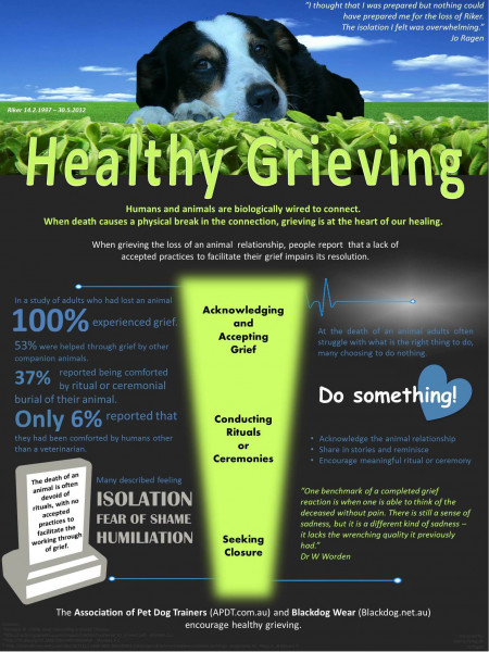Healthy Grieving Infographic