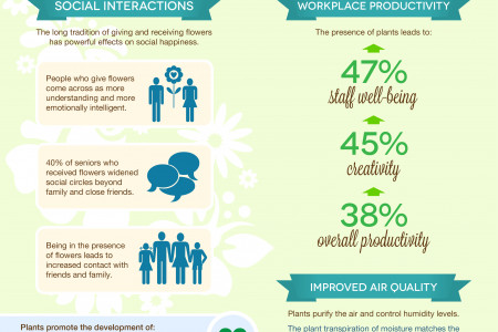 Healthy Living with Flowers & Plants Infographic