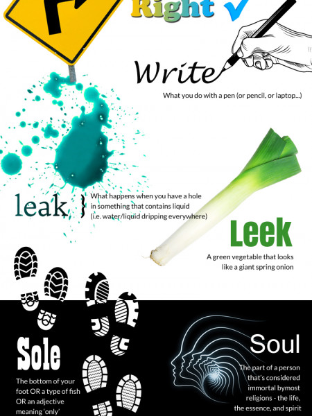 Homophones (And How To Spell Them) Infographic